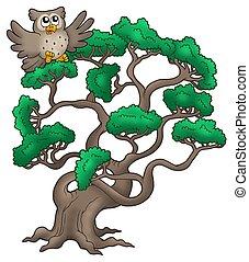 Big pine tree with cartoon owl - color illustration.