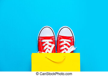 big red gumshoes in cool shopping bag on the wonderful blue background
