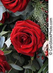 big red rose in close up