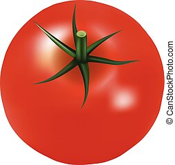 Big Ripe Red Fresh Tomato With Parsley Isolated On A White...
