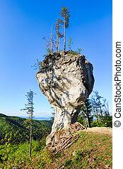 Big rock with name Budzogan in Slovakia