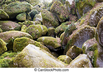 big rocks in a brittany forest