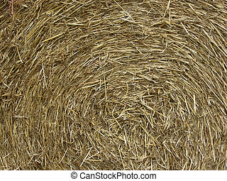 Big roll of hay background