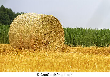 Big round bale of straw in a field after harvest