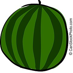 Big round watermelon, illustration, vector on white background.