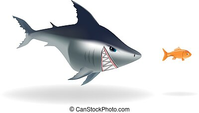 Big scary shark chasing goldfish