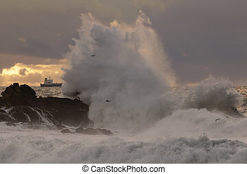 Big sea wave splash at sunset