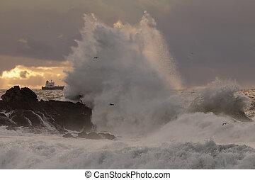 Big sea wave splash at sunset