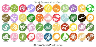 Big set of 44 flat essential oil labels. White Silhouettes...