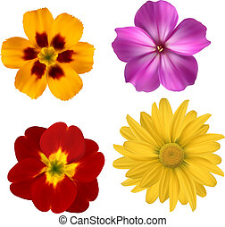 Big set of beautiful colorful flowers. Design flower set 1....