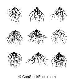 Big Set of black Roots. Vector Illustration.