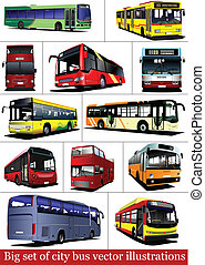 Big set of City buses. Tourist coa
