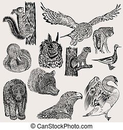 Big set of hand drawn vector animals.eps