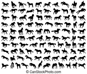 Big set of horses silhouettes, vector illustration