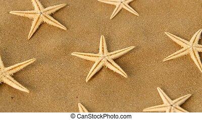 Big set of sea stars on sand, rotation