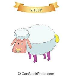Big sheep on a white
