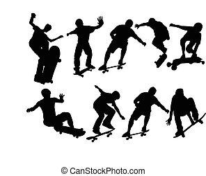 big skateboard collection - vector