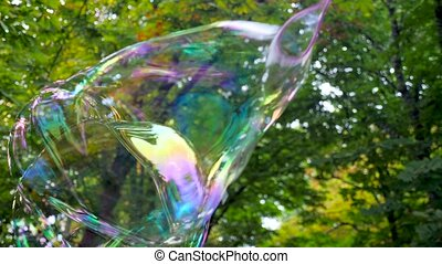 Flying big soap bubble among green and yellow trees. Beautiful big soap bubble explodes and dissolves in the air. Multicolored big bubble bursts. Soap bubble flies on a background of trees in the park