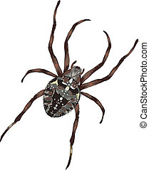 Big spider with cross-shaped drawing on a back. Vector...