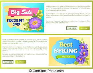 Big Spring Sale Advertisement Label Flowers Web