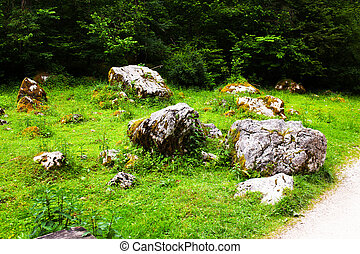 Big stones lie on the green grass