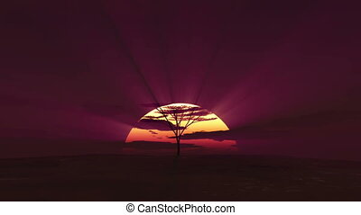 big sun sunrise in Africa, time lapse 3d render