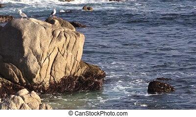 Big Sur California Coast - the scenic coast of big sur...