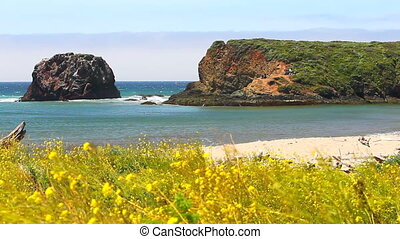 big sur coastline - beautiful California beach coastline in...