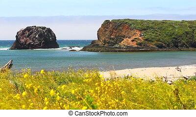 big sur coastline - beautiful California beach coastline in...