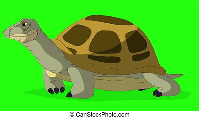 Big swamp turtle sniffing. Handmade animated looped footage isolated on green screen