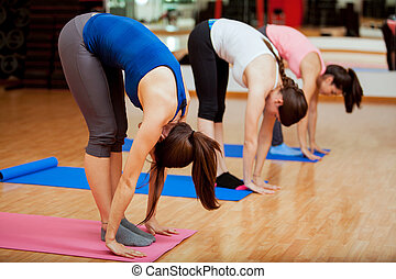 Big toe pose during yoga class - Group of young women trying...