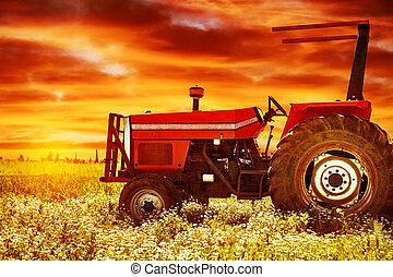 Big tractor on sunset