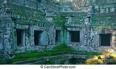 Big tree growing from the ancient ruins. Cambodia, Angkor....