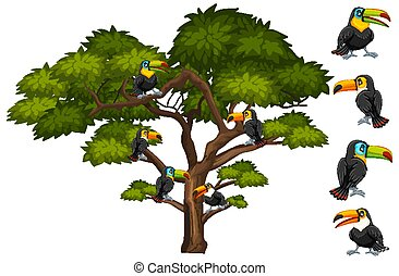 Big tree with many toucan birds on the branch