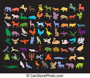 Big variety of animals on black background