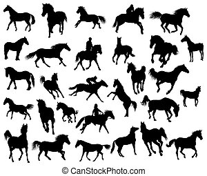 horses silhouettes - Big vector collection of different ...