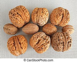 Big vs small walnuts on canvas background