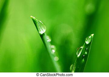 big water drop