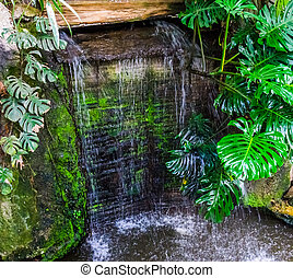 big waterfall in a garden with green leaves, tropical gardens and architecture