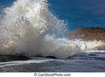 big wave at high tide, beating on the coast (photo)