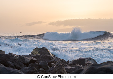 Big wave going to the rocky coast at sunset