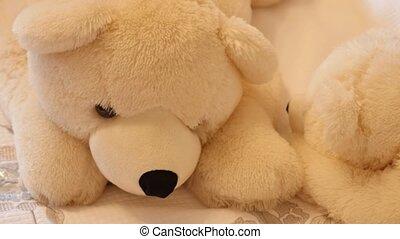 Big white teddy bear - Big white teddy a bear.