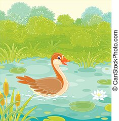 Big wild goose on a beautiful forest lake