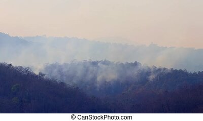Big wildfires and smoke in mountain forests during drought. ...