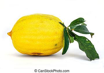Big yellow lemon isolated on white background.