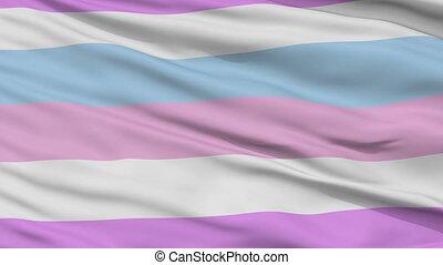 bigender, haut, drapeau ondulant, fin, fierté