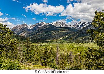 Bighorn Mountain Rocky Mountain National Park