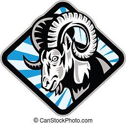 Illustration of a bighorn ram sheep goat set inside diamond shape on isolated background.