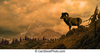 Bighorn Sheep - Image from an original 12x24 painting of a...