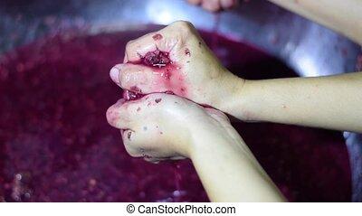 Bignay home wine processing hand crushing, mashing and...